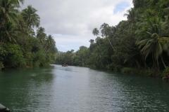 Loboc river cruise ロボックリバークルーズ