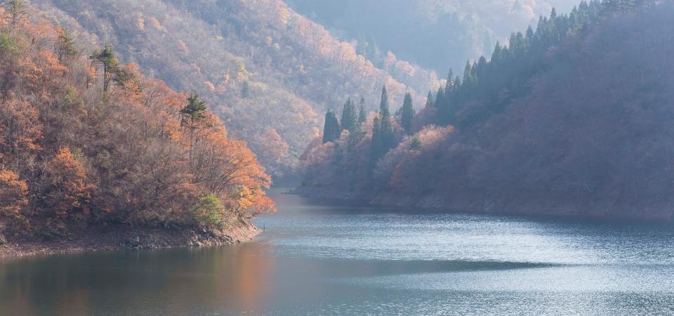 福井県大野市の九頭竜湖