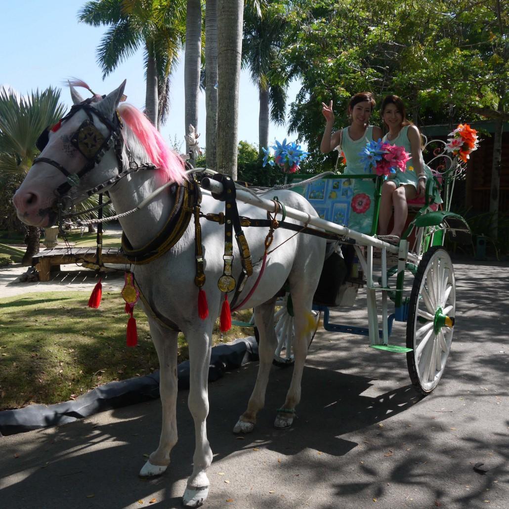 セブ島のプランテーションベイリゾート&スパの馬車